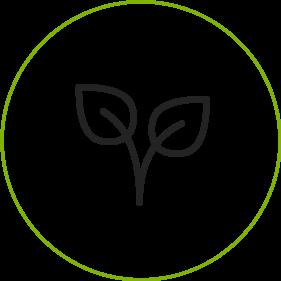 icon-sostenibles-vacio