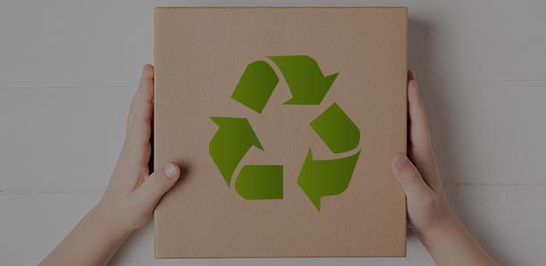 Eco cartón